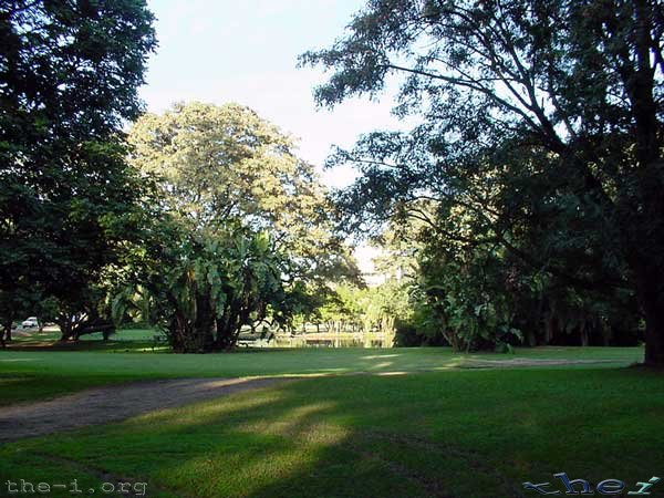 UQ Grounds