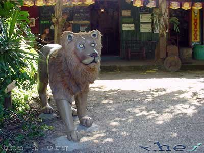 The Lion's Den Hotel's Lion