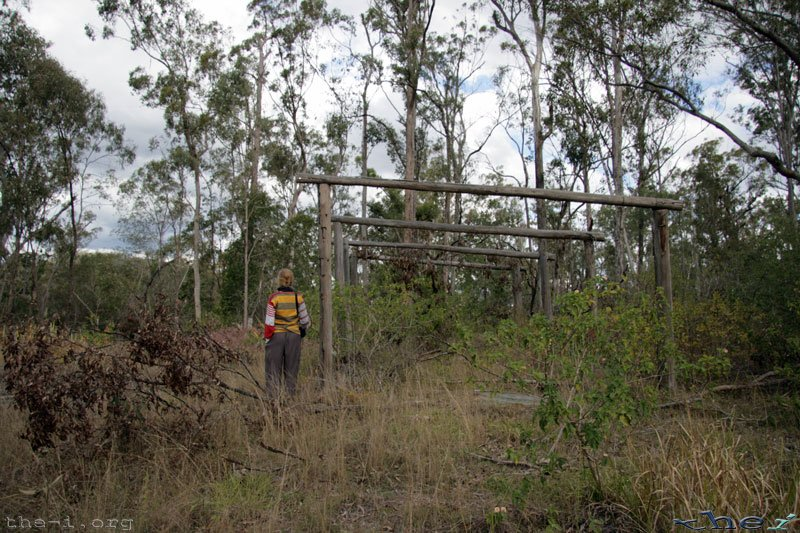Bronwen and the remains of the back shed
